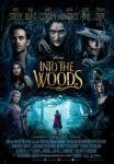 Ficha de Into the Woods